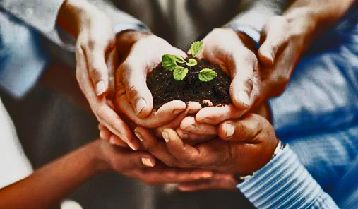 The Seeds we Nurture Will Take Root and Provide a Harvest During Hard Times